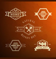 bee label and badge vector image