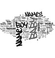 baby boy names text word cloud concept vector image vector image