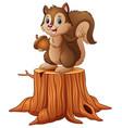cartoon squirrel standing on tree stump holding