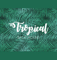 colorful naturalistic tropical background from the vector image vector image