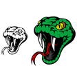 Head of danger aggressive snake vector image vector image