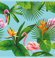 pink flamingo tropical leaves and flowers vector image vector image