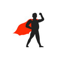 superhero dad icon design template isolated vector image