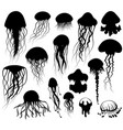 set of jellyfish silhouettes vector image