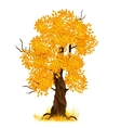 autumn tree isolated on white vector image
