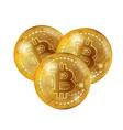bitcoin gold coins vector image vector image