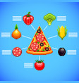 infographics with pizza slice and ingredients vector image vector image