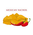 mexican nachos chips cartoon flat style vector image vector image