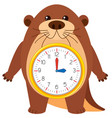 otter clock on white background vector image vector image