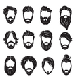 set of beards and hairs vector image