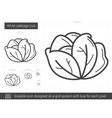 White cabbage line icon vector image vector image