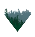 coniferous forests sign vector image vector image