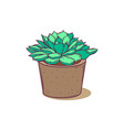 cute succulent in pot for postcards tags web vector image vector image