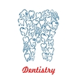 Dentistry stomatology tooth poster vector image vector image