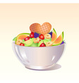 fruit salad vector image