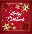 merry christmas card flower poinsettia golden star vector image