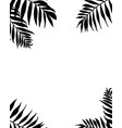 palm leaves frame tropic plants branches vector image