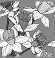 seamless floral pattern with narcissus vector image