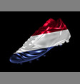 soccer football boot with the flag of the vector image