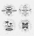 surfing vintage black labels with rays vector image