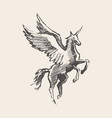 beautiful unicorn wind sketch vector image vector image