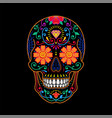 decorative colorful painted mexican sugar skull on vector image vector image