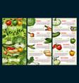 farm vegetables pepper carrot zucchini beans vector image vector image