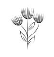 minimalist tattoo flowers leaves foliage herb line vector image vector image