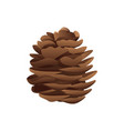 pinecone in brown color and realistic style vector image