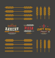 Set of stylized ear wheat Template labels vector image