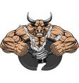Strong ferocious bull vector image vector image