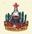 vintage mexican colorful template vector image