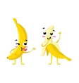 banana Cute fruit character couple vector image