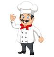 cartoon happy chef with ok sign vector image vector image