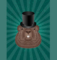 groundhog day concept national holiday in usa and vector image vector image