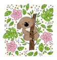 koala garden australian bear flower vector image vector image
