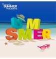 Summer letters vector image vector image