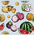 summer seamless pattern with fruit vector image vector image