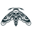 vintage monochrome wasp concept vector image vector image