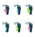 beautiful feet vector image vector image