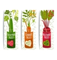 Healthy Vegetables Juices Design Collection on vector image vector image