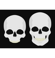 Human skull isolated on black vector image vector image