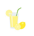 lemon juice in glass with slice of lemon vector image