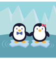 Penguin Couple in Ice Theme Background vector image vector image