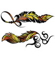 set bird tattoo feathers vector image vector image