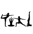 silhouettes of a of a girl practicing yoga vector image vector image