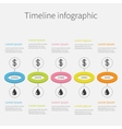 Timeline Five step Infographic Colorful circles vector image vector image