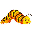 a caterpillar on white background vector image vector image