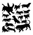basset hound dog animal silhouettes vector image