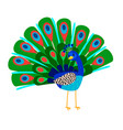cartoon peacock bird icon vector image vector image